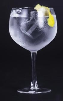Gin Tônica Draco por R$15,00 [+18]