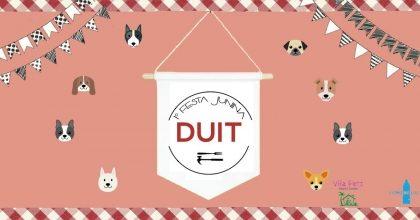 20% de desconto nas Oficinas* de Festa Junina na Oficina Café Duit!