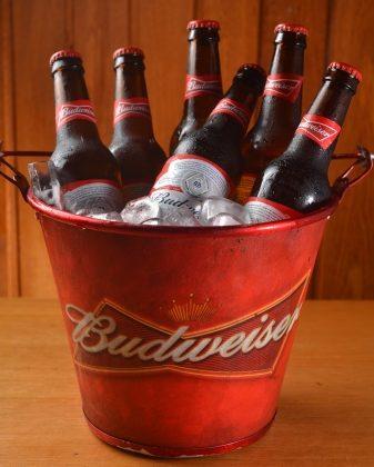 10 Cervejas Budweiser Long Neck por R$ 49,00! [+18]