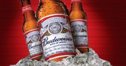 Picanha Suína + 1 Budweiser por apenas R$ 39,90! [+18] (quinta)