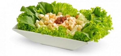Salada de Frango com Cream Cheese por apenas R$ 9,95! (Mooca Plaza)