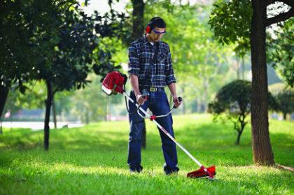 Cupom de 5% OFF em seleção de jardinagem na Americanas.com!