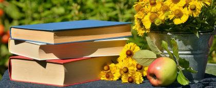 Cupom de 20% OFF em seleção de livros no Americanas.com